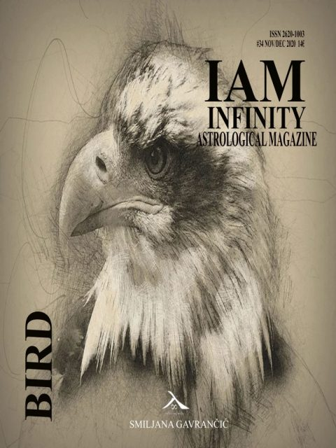 BIRD #IAM34 November/December 2020 – Order your digital/hard copy!